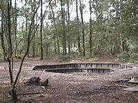 de kampvuurkuil midden in het bos